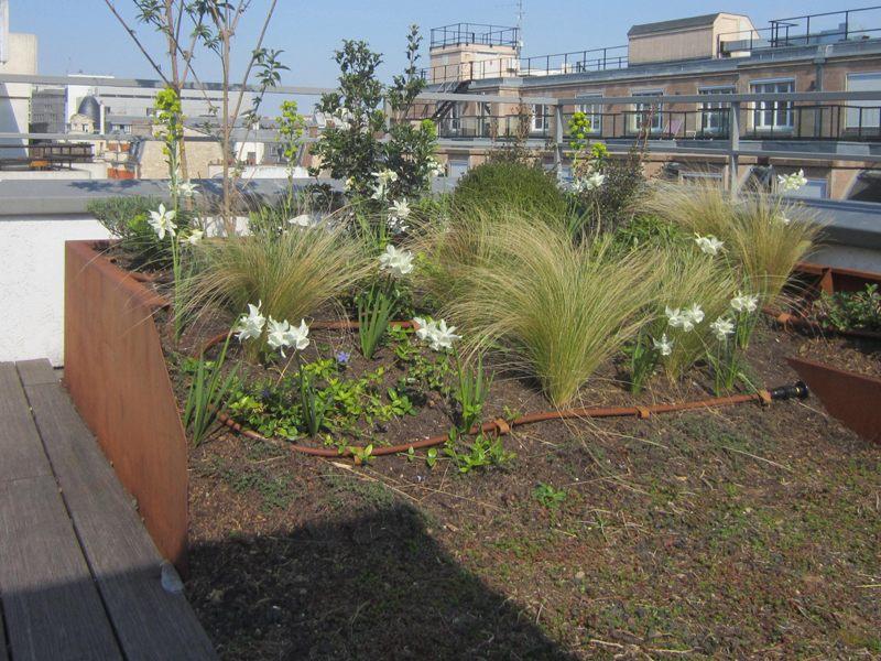 Bordure L corten, jardinière artificielle h 20-50cm