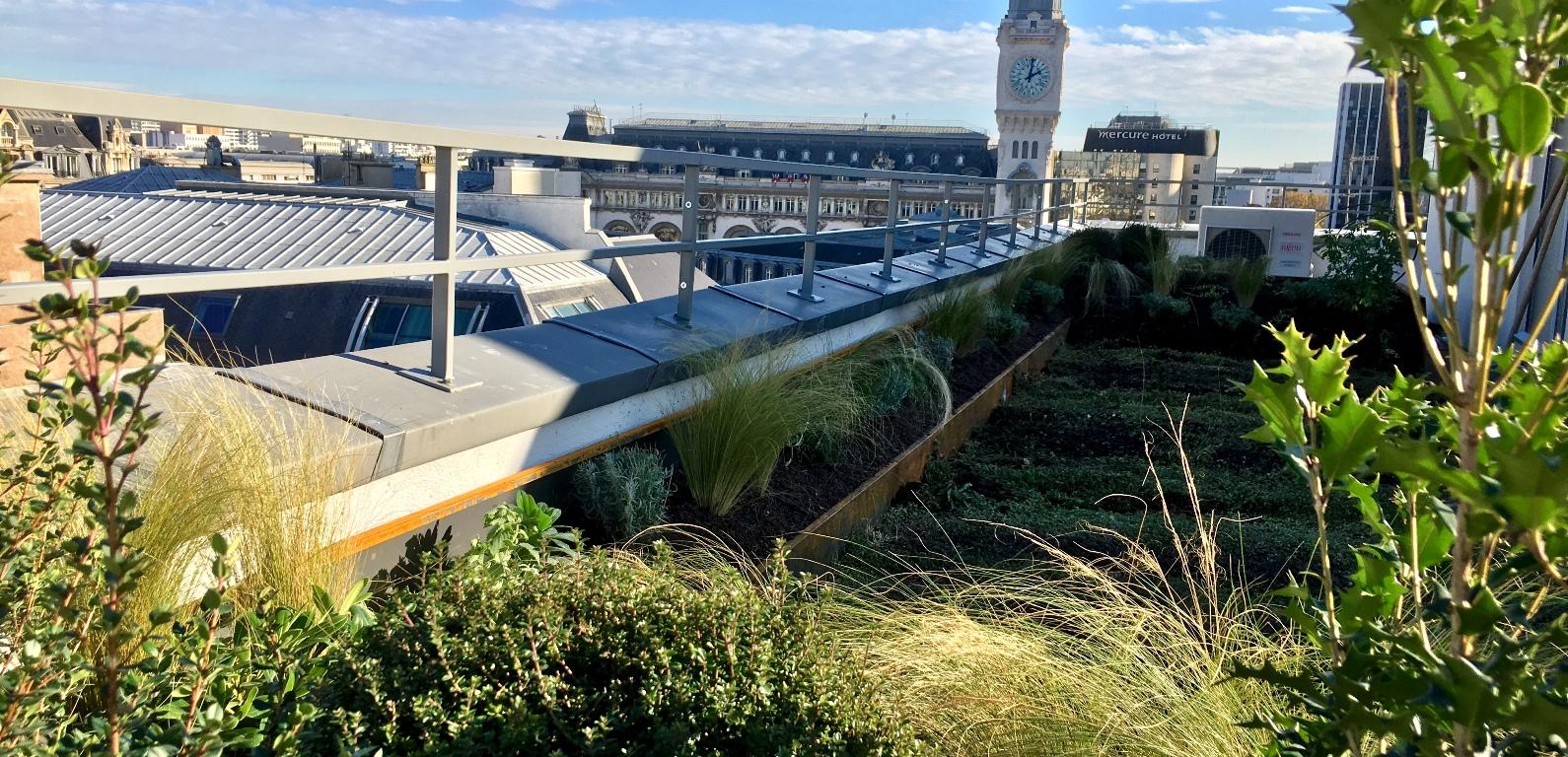 Bering corten trapèze, bacs alignés, jardin-terrasse à Paris